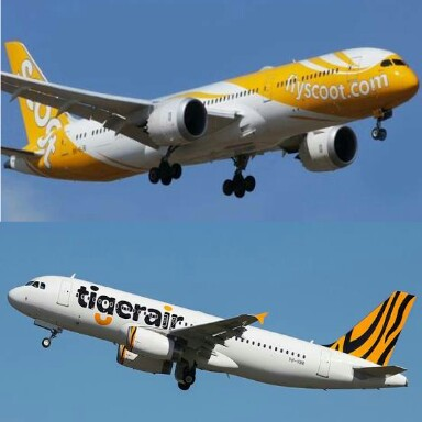 Ilustrasi Scoot & TigerAir